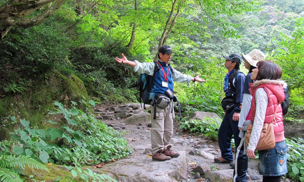 妙高高原ネイチャートレッキング 天然温泉付きコース