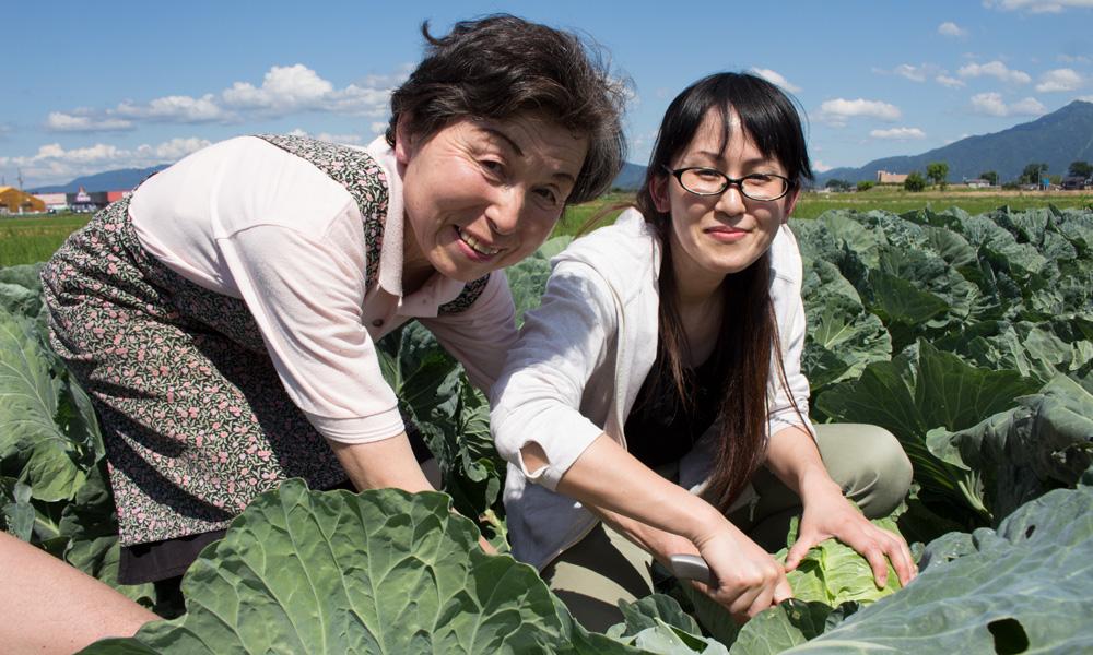 旬な野菜の収穫体験【野菜持ち帰りパック1箱(中)+米(5kg)】